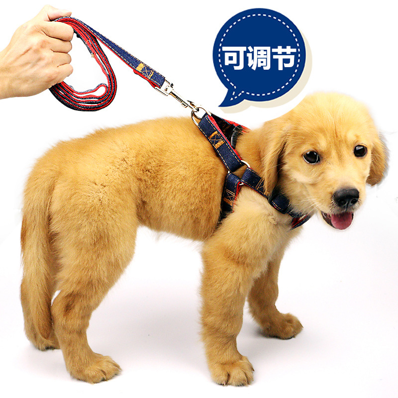 Dog Small Lanyard Neck Ring Golden Retriever Puppy Medium Traction Puppy Dog Lanyard Sub-Teddy Chain Unscalable Through