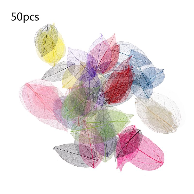50 Pcs Mixed Color Natural Skeleton Leaves Pressed Flower For Jewelry Making