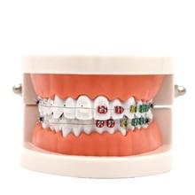 1 шт. Стоматологическая модель зубов керамический кронштейн металлическая АРКА Проволока обучение исследование Зубы Модель Buccal трубка Лигатура Галстуки стоматологические инструменты