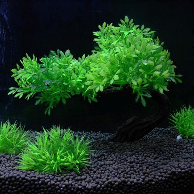 Fish Tank Decoration Landscaping Simulation  2