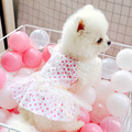 Hund Kleid Regenbogen Garn Prinzessin Rock Frühling Sommer Hund Kleidung Für Kleine Hund Partei Hund Rock Welpen Haustier Kostüm Haustiere outfits-in Hundekleider aus Heim und Garten bei