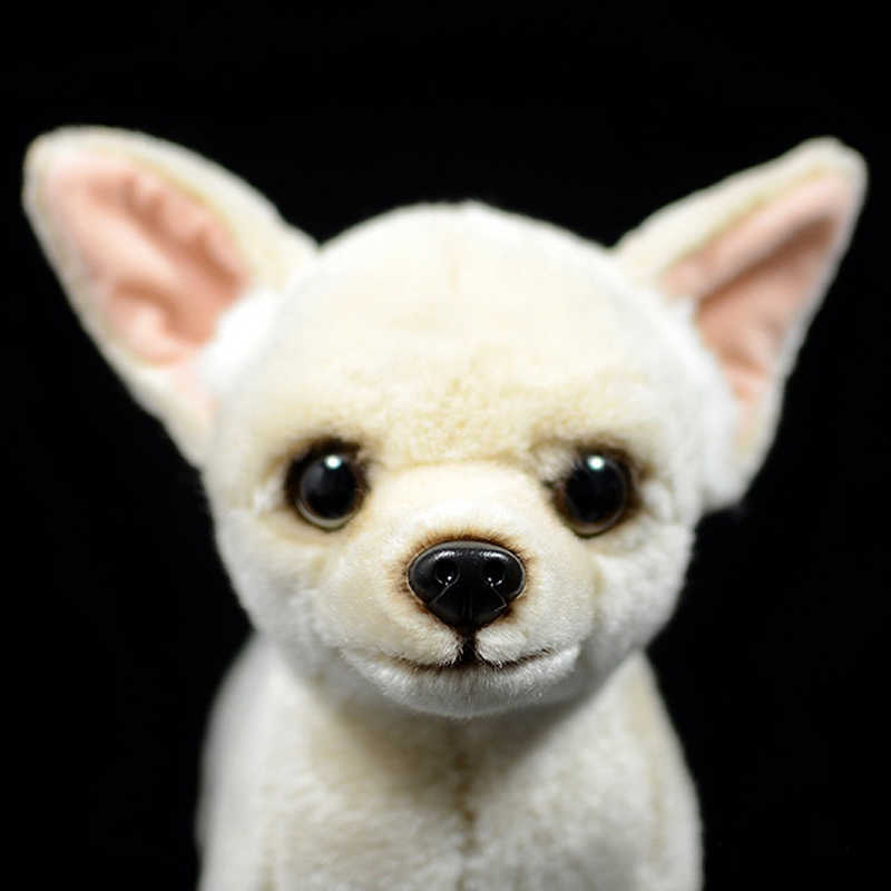 25 ซม.เหมือนจริง Chihuahua สุนัขของเล่นตุ๊กตาสุนัขสุนัขน่ารักตุ๊กตาสัตว์ตุ๊กตาชีวิตจริง Chihuahua ของเล่นสำหรับเด็กของขวัญ