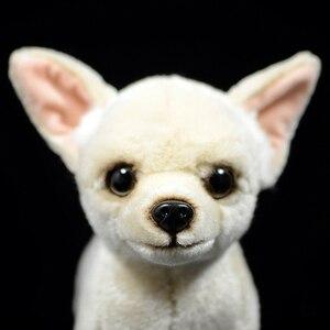 Image 3 - 25 センチメートルリアルなチワワ犬ぬいぐるみかわいい犬子犬ぬいぐるみ人形ソフト実生活チワワおもちゃ子供のためのギフト