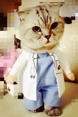 颜色04医生变身装