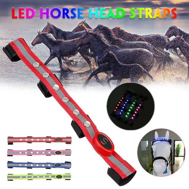LED Horse Head Straps 3 Luminous Modes Colorful Lighting Equestrian Equipment 1