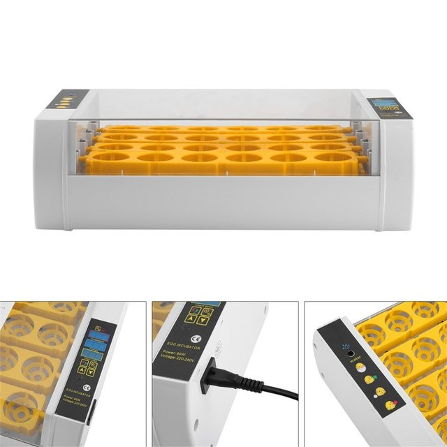 Fast Shipping Practical 24 Eggs Large Capacity Mini Incubator For Chicken Poultry Quail Eggs Home Use Automatic Egg Turning 5