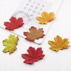 100 Autumn/Maple Sil...