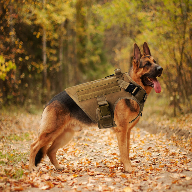 No Pull Harness For Large Dogs Military Tactical Dog Harness Vest German  Shepherd Doberman Labrador Service Dog Training Product Harnesses  -  AliExpress