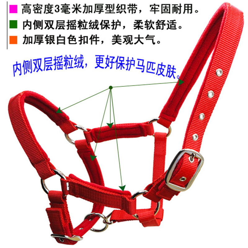 Nickel-plated Buckle Bridle Thickened Webbing Accessories for Horses Strong and Durable Double-layer Polar Fleece Cushion