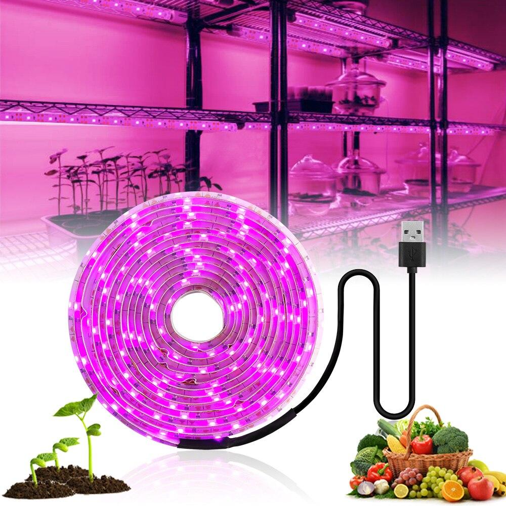 Đèn LED Phát Triển Ánh Sáng Suốt 5V USB Phát Triển Đèn Dây 2835 LED Phyto Đèn Cho Thực Vật Nhà Kính Thủy Canh Trồng 0.5M 1M 2M 3M