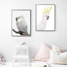Черная Картина на холсте какаду австралийское животное принт