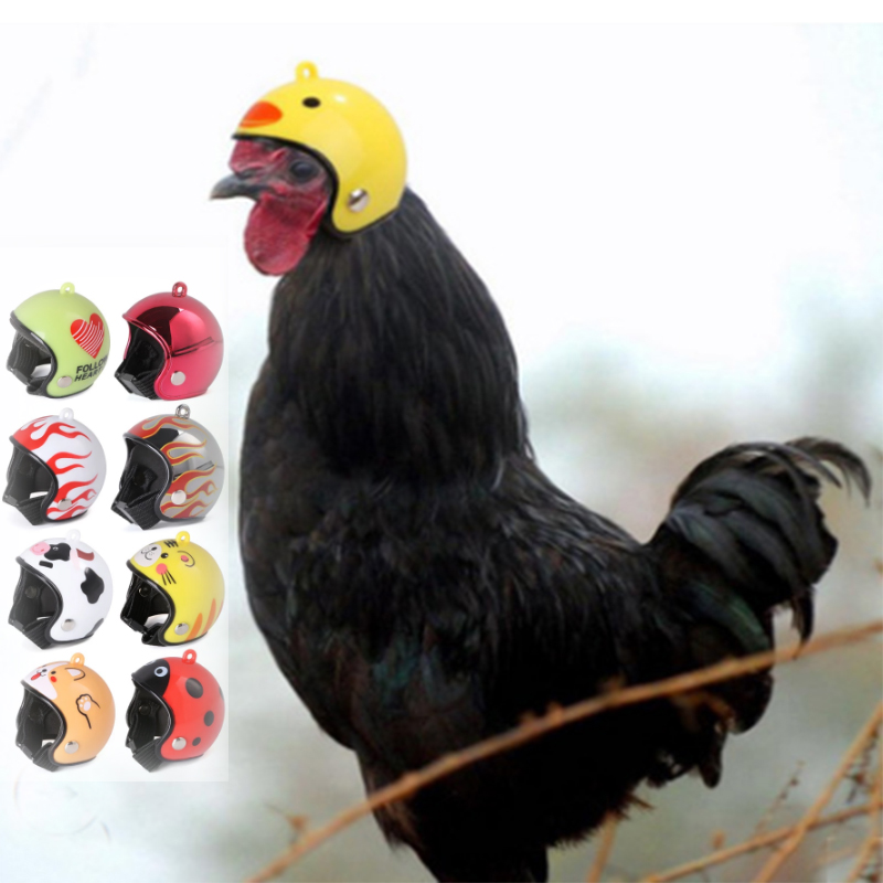 Hens Ducks Pet Protective Helmet Cap Pet Protective Gear Sun Rain Protection Helmet Toy Small Pet Supplies Costumes Accessories