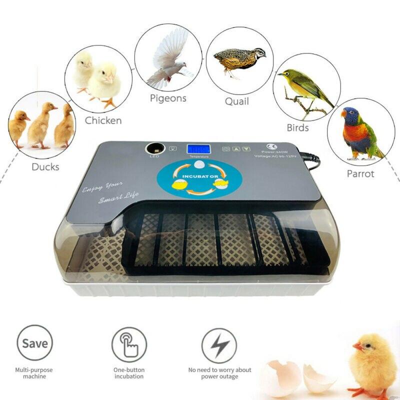 Цифровой автоматический 4 35 яиц инкубатор аппарат для искусственного высиживания для утиных птиц гуся - 3