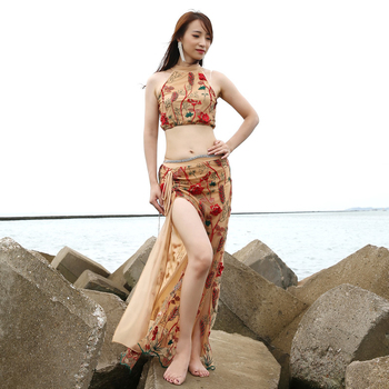 2pcs/set Wholesale Belly Dance Costumes Female Uniforms New Sexy Summer Belly Dance Suits #DP0018