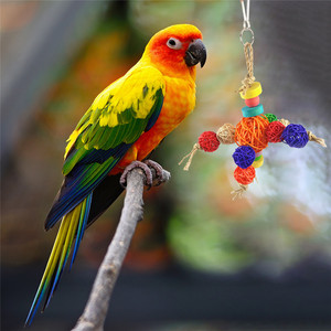 Rattan Ball String Formed Robot Bird Chew Toys Parrot Supplies Pet Bird Toys Bite Ball String Hanging Rope Toys Home Decoration