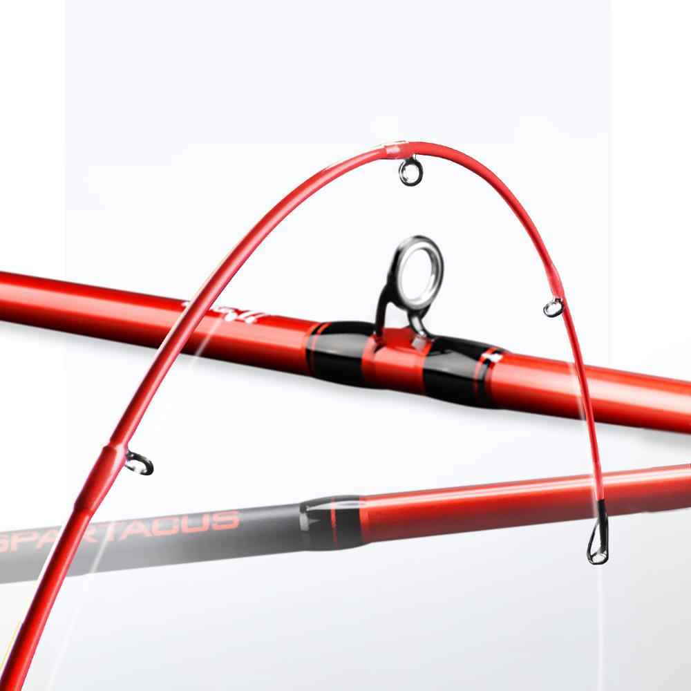 Pole Fishing Float  Removable Body Two Tips