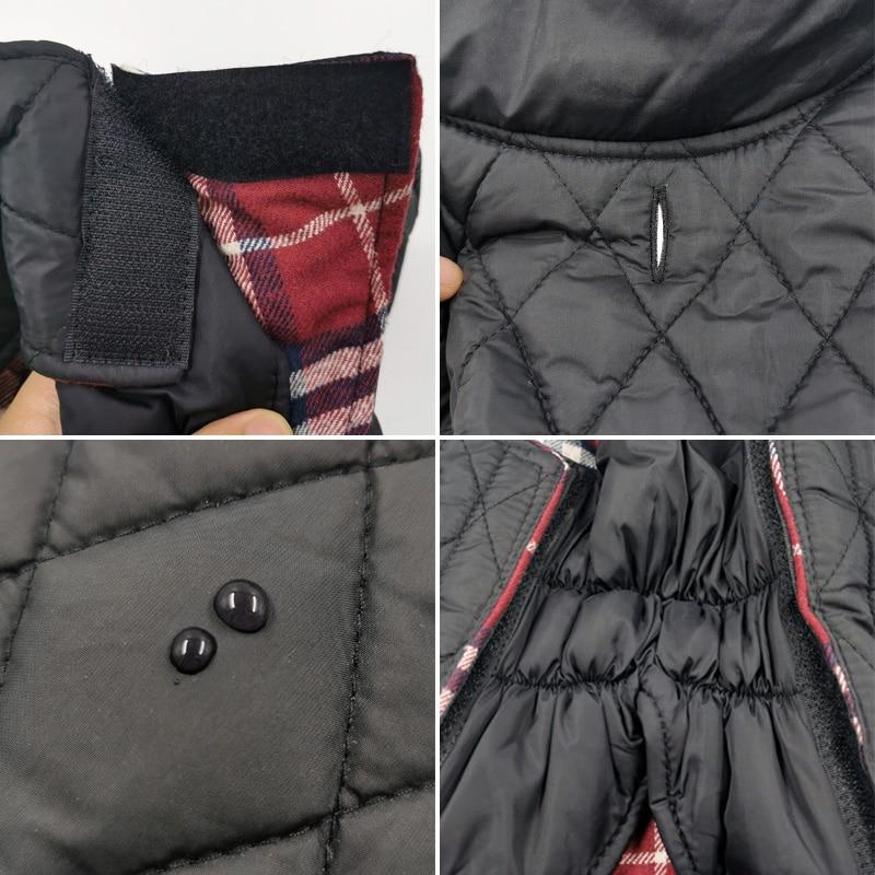 格子狗衣服细节