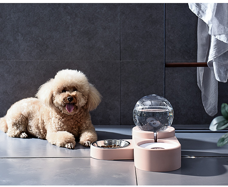 Pet Double Bowl Automatic Dispenser with Simple Spherical Design and Have a Large Capacity Provide Plenty of water to Drink image