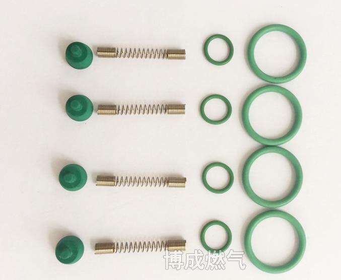 LPG CNG Kits For NT401 Injector Rail CNG Car Natural Gas Injection Rail OMVL Common Rail Spring Apron Repair Kit Elysee