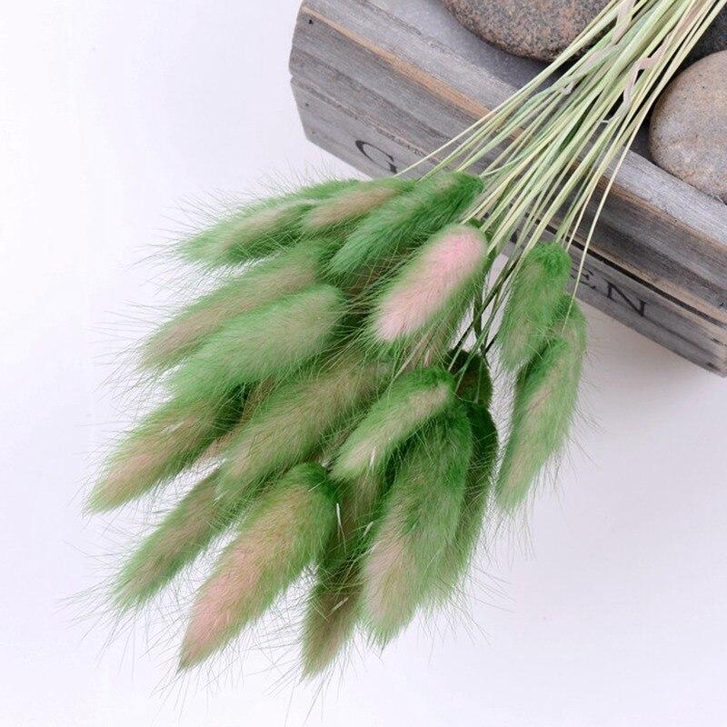 HE1217绿色