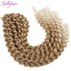 Sallyhair Crochet Braids Ombre