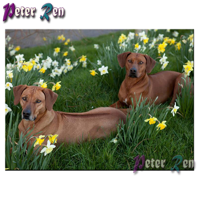 5d animals Brown dog in flowers Diamond Painting diamond Embroidery full Square/round Mosaic Picture Rhinestone Home Decoration