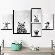 Black And White Owl Lemur Rabbit Pug Deer Wall Art Print Canvas Painting Nordic Posters Prints Pictures For Living Room