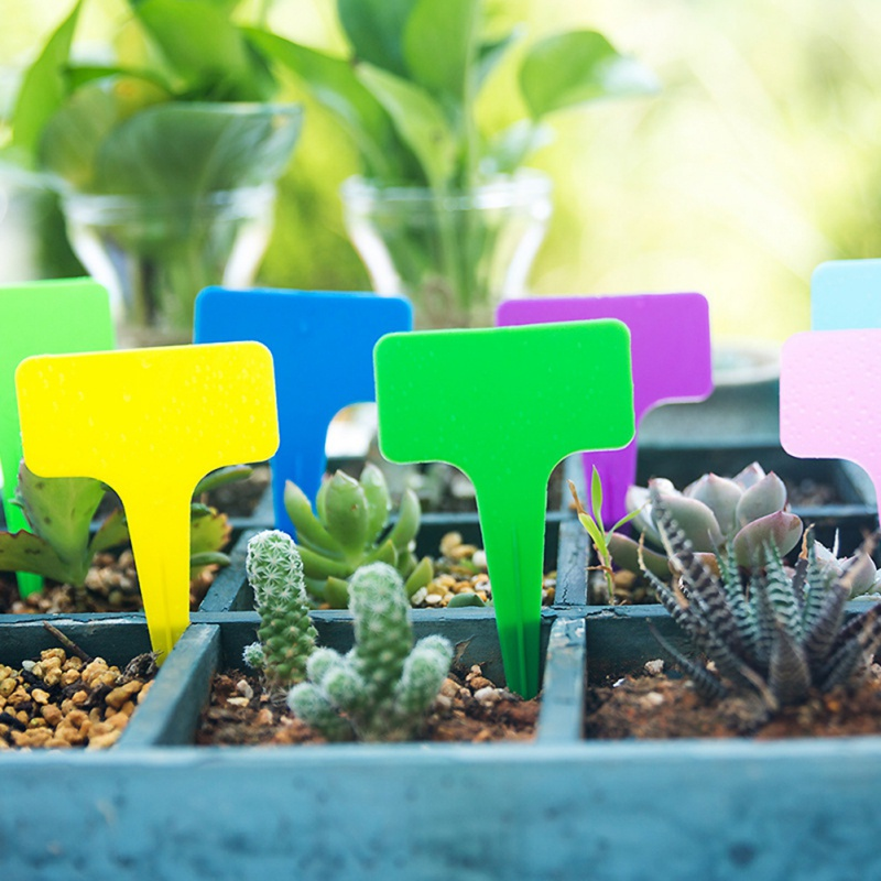 100pcs Plants Tags For Gardening Plant T Shape Waterproof Tags Flower Vegetable Planting Gardening Label Tools Garden Tray Lids
