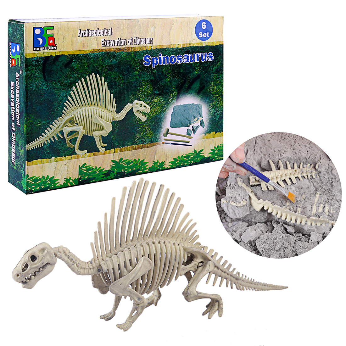 Children Creative Educational Dinosaur Archaeology Excavation Toys - Spinosaurus  Ceratosaurus