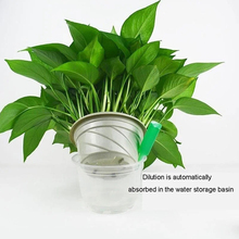 Home-Potted Hydroponic Fertilizer Flower Nutrient-Solution Plant Concentrated-Rich Bamboo