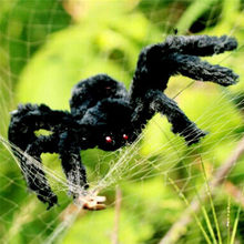 2020 New Plush Spider Scary Creepy Soft Plush Black Spider Toy For Party Halloween Simulation Decorations Kid Gift(China)
