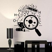 School Decoration PVC Wall Decor Vinyl Decal Science Chemistry Scientist Stickers Murals Unique Gift  LW569