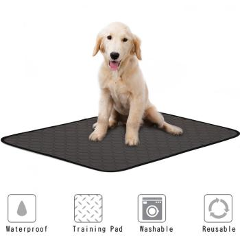 Washable Dog Diaper Mat Urine Absorbent