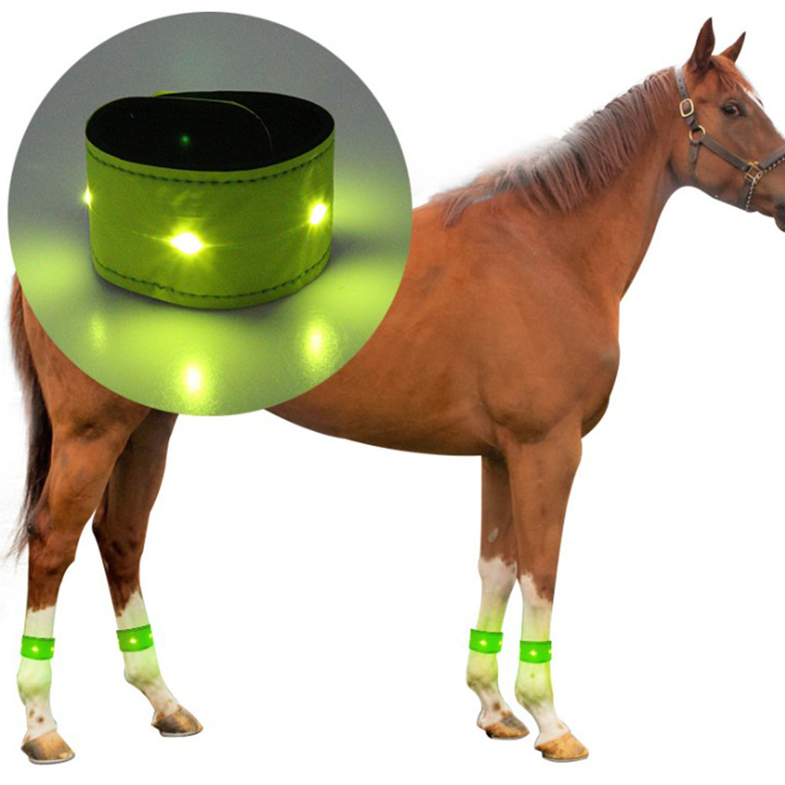 Equestrian Supply LED Horse Leg Strap Reflective Belts for Arm Wrist Ankle