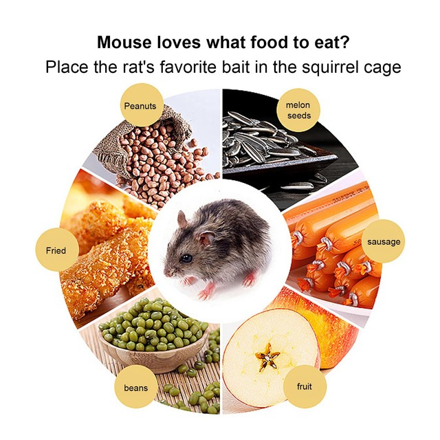 Behogar Two-door Mouse Pest Animal Mice Hamster Cage Control Repeller w/ Sensitive Trigger for House Home Farm Hotel 40x11x14cm 3