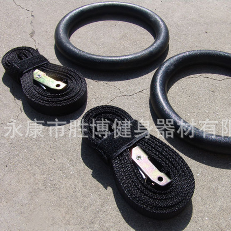 Bulk Supply Gym Ring ABS Gymnastics Rings/Fitness Hand Ring/Medical Use Rehabilitation Ring