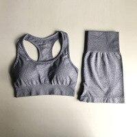 0309 Gray Bra Shorts