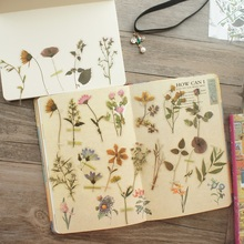 36pcs Natural Herbal Specimens Wild Flower  Style PVC Sticker Scrapbooking DIY Gift Packing Label Decoration Tag