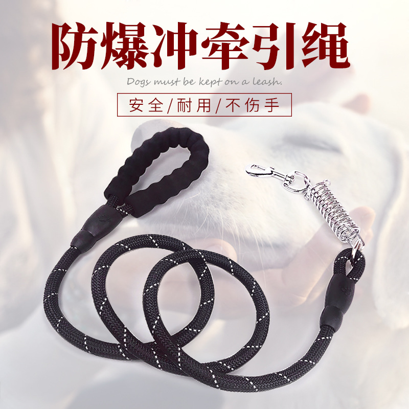 New Style Pet Traction Rope Eva Dog Nylon Reflective Hand Holding Rope Sub-Band Spring Proof Punch Supporting K9 Chest And Back
