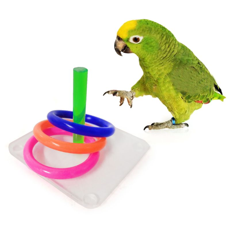 Bird Educational Puzzle Toys Acrylic Interactive Ring Toss Game Parrot Training K1MF