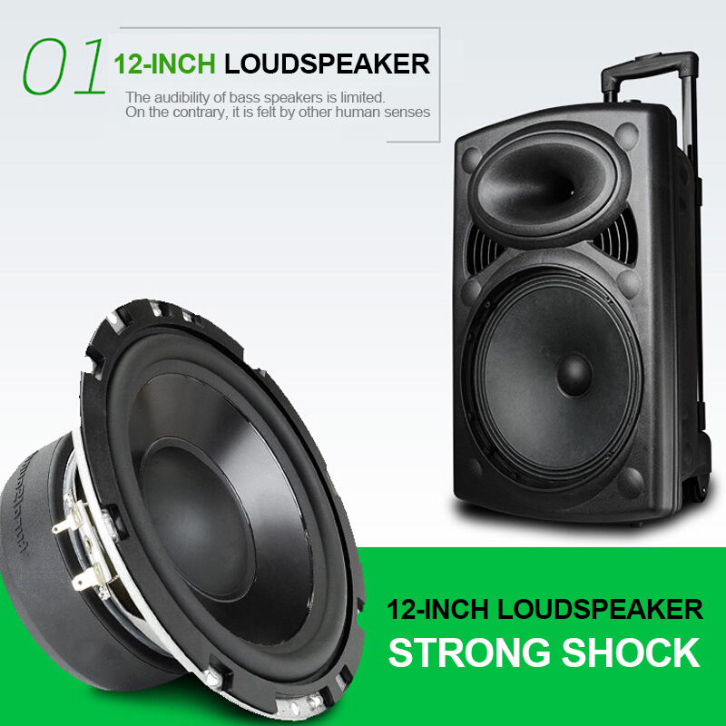 Big Speaker 300W Power Outdoor Bluetooth Wireless Microphone Pull Rod Remote Controller FM Radio Support TF Subwoofer 4