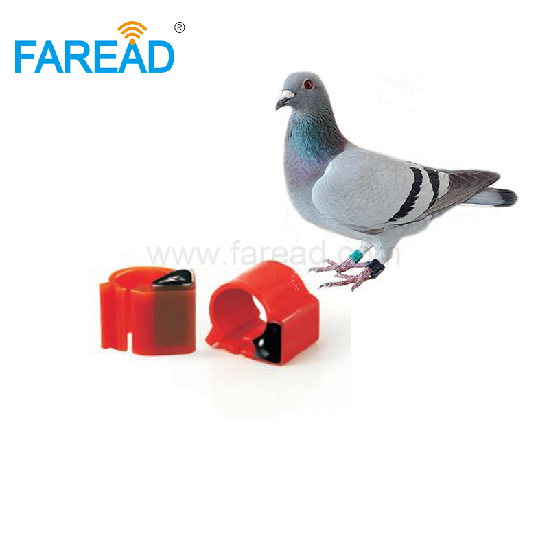 Free Shipping X100pcs ISO11784/5 FDX-B ABS EM4305 134.2KHz Electronic RFID Animal Tag RFID Pigeon Ring For Racing Tracking