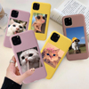 Cute Cat Phone Cover For iPhone 12 12PRO 11 Pro Max XS XR SE 2020 7 8 Plus 6 6s Fashion Animal Soft Silicone Anti-fall Case Gift
