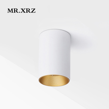 MR.XRZ 10W Mini COB LED Spotlight 220V to 240V Surface Mounted Anti Glare High CRI Lamps Ceiling Spots For Home Indoor Lighting 1