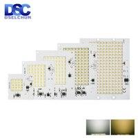 Chip LED SMD 100, 10W, 20W, 30W, 50W, 2835 W, cuentas de luz de inundación, CA 220V-240V, lámpara Led de proyector DIY para iluminación exterior