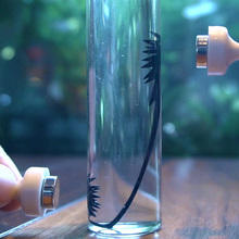 Ferrofluid Magnetic Fluid Liquid Display Funny Toy Stress Relief Toys Science Decompression Anti New
