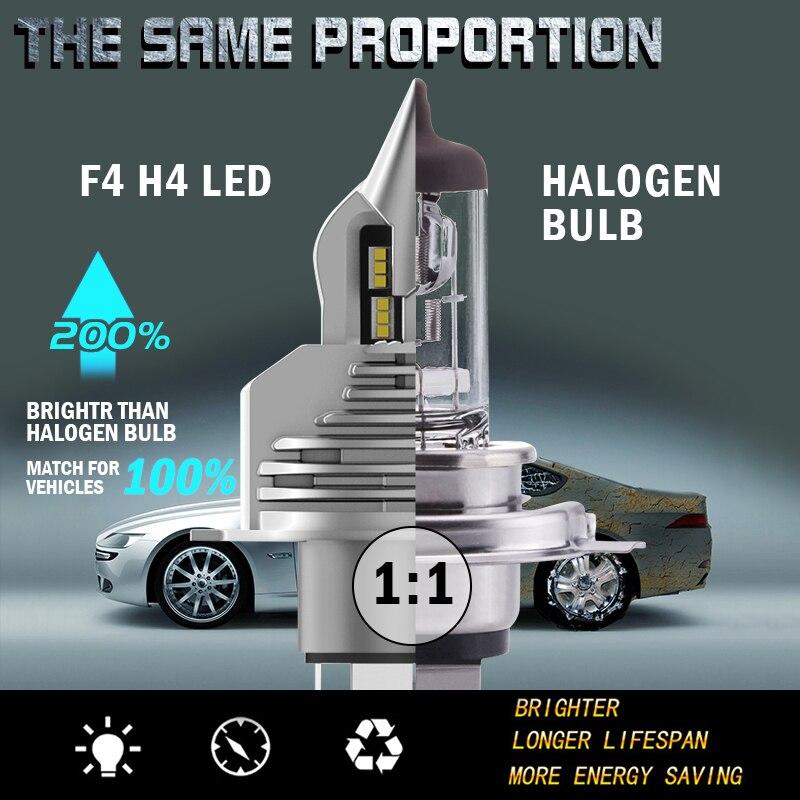 LHL-F4-H4  (2)
