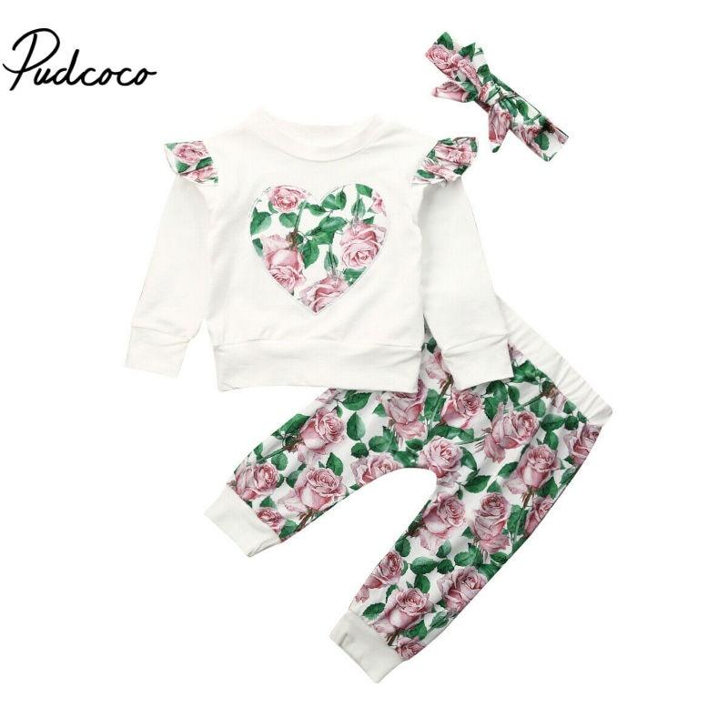 >2020 Spring <font><b>2PCS</b></font> <font><b>Toddler</b></font> <font><b>Kids</b></font> Baby Boy Girls Hooded Sweatshirt Long Sleeve Tops Floral Pants Clothes Outfits Set 0-24 Monthes
