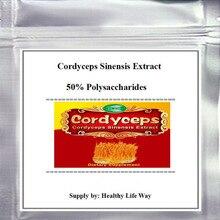цена на 100gram (3.52oz)  Cordyceps Sinensis Extract 50% Polysaccharides Powder free shipping