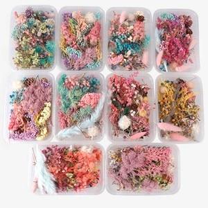 Image 1 - אקראי 1 תיבת יותר מ 8 סגנון לערבב פרח לחוץ יבשה יבש עלים צמחים עבור נייל אמנות Decors תכשיטי ביצוע אביזרי DIY